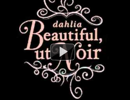dahlia channel  on Youtube